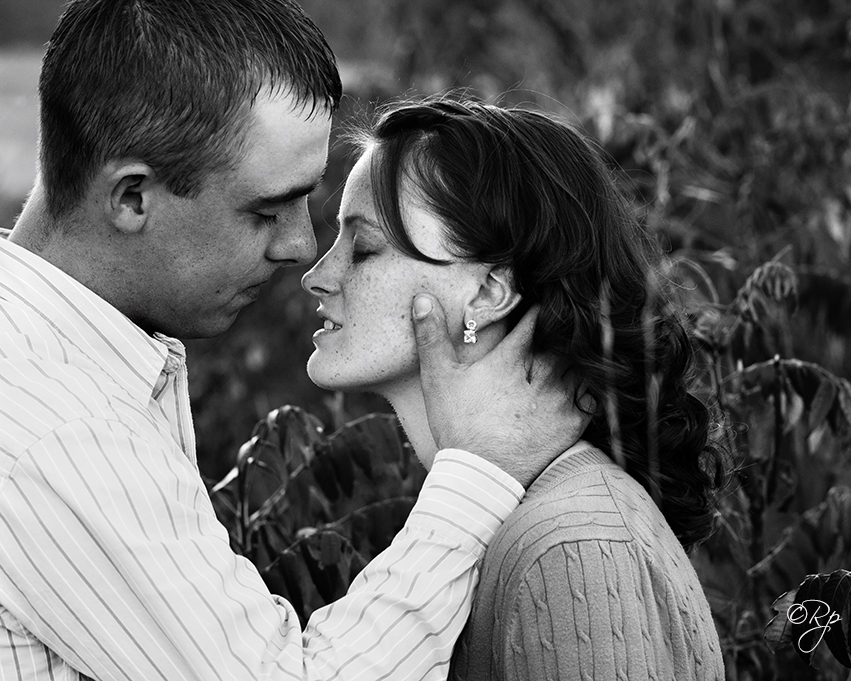 engagement wedding portraits michigan