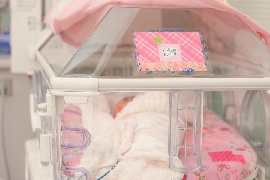 2388 nicu baby girl photos