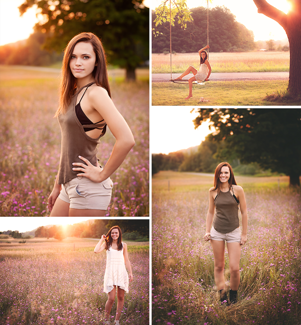 Backlit Summer Senior Field Flowers Kalkaska