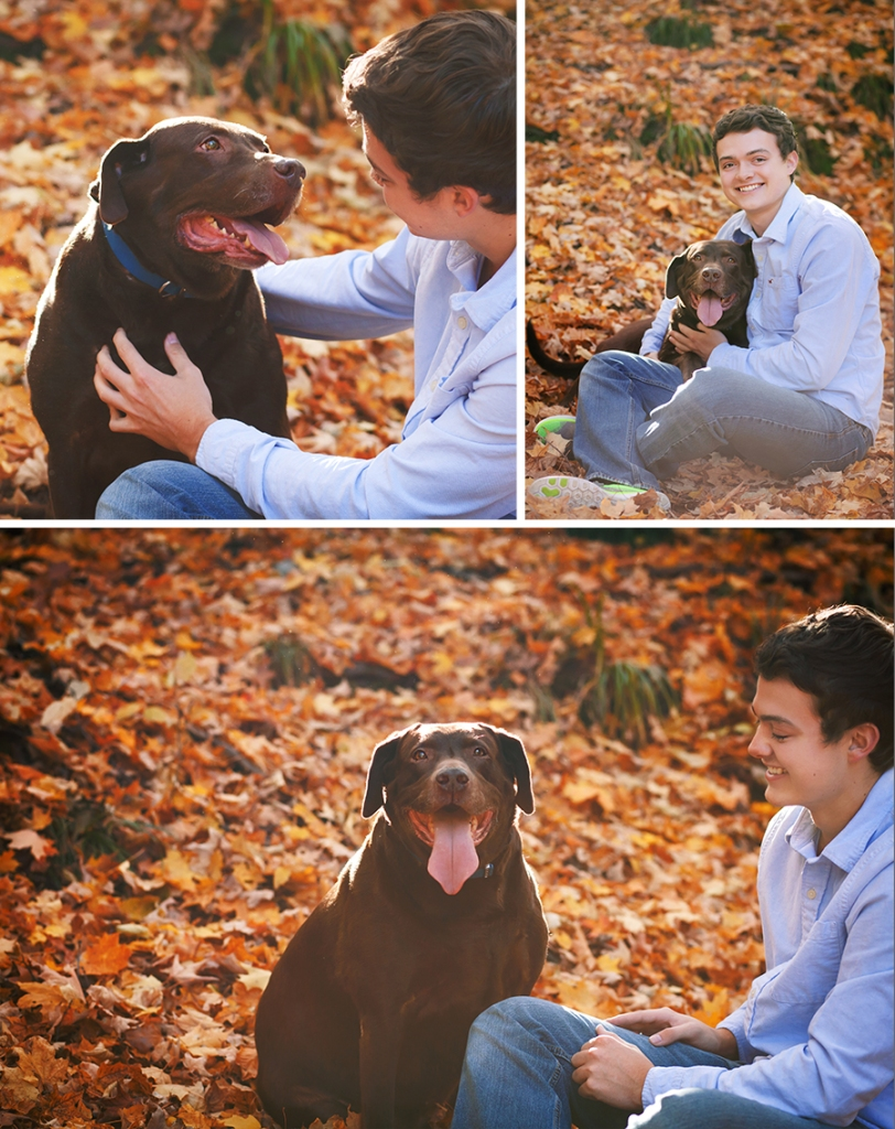 A Boy And His Dog Photoshoot Autumn October Leaves